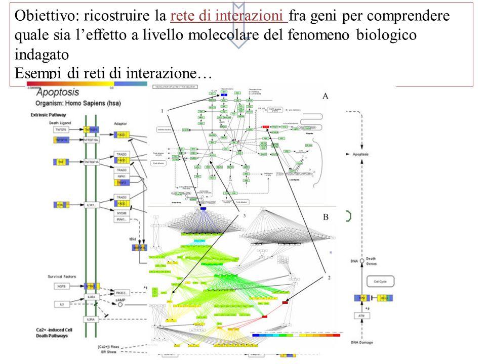 Obiettivo: ricostruire la rete di interazioni fra geni per comprendere quale sia l'effetto a livello molecolare del fenomeno biologico indagato Esempi di reti di interazione…