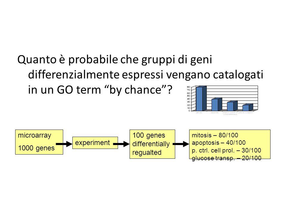 """Quanto è probabile che gruppi di geni differenzialmente espressi vengano catalogati in un GO term """"by chance""""? microarray 1000 genes experiment100 gen"""