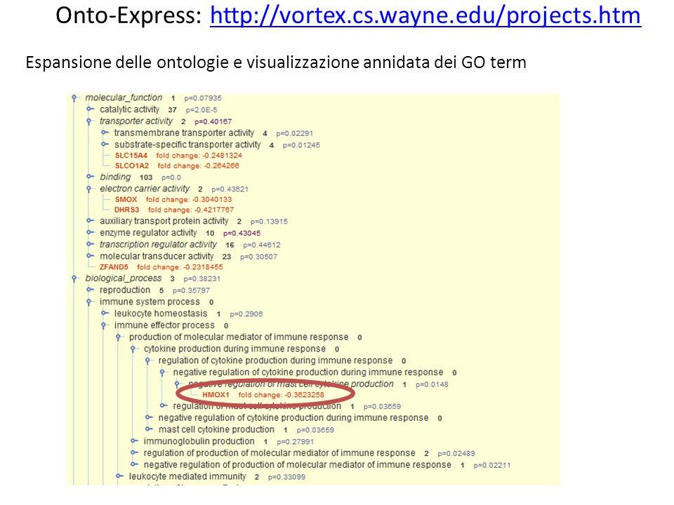 Espansione delle ontologie e visualizzazione annidata dei GO term Onto-Express: http://vortex.cs.wayne.edu/projects.htmhttp://vortex.cs.wayne.edu/projects.htm
