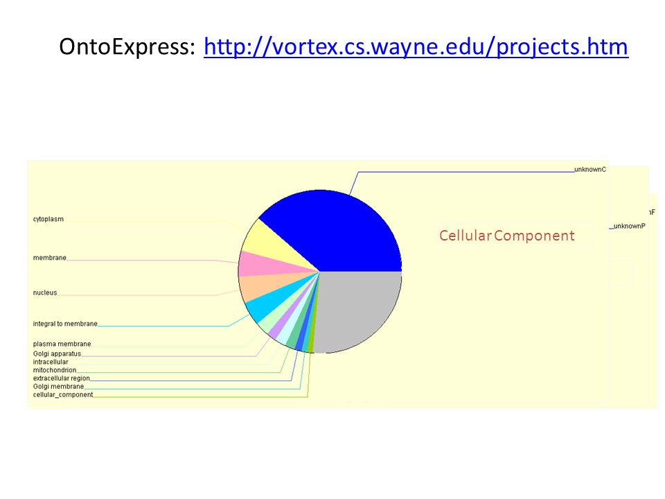 OntoExpress: http://vortex.cs.wayne.edu/projects.htmhttp://vortex.cs.wayne.edu/projects.htm 73 Molecular Function Biological Process Cellular Component