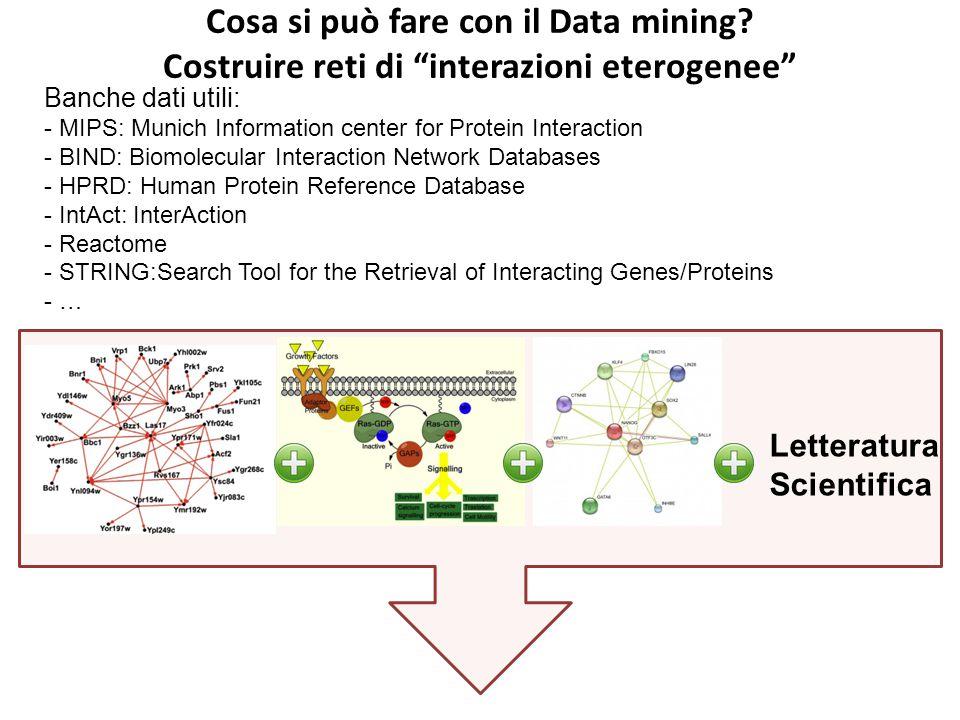 """Cosa si può fare con il Data mining? Costruire reti di """"interazioni eterogenee"""" Banche dati utili: - MIPS: Munich Information center for Protein Inter"""