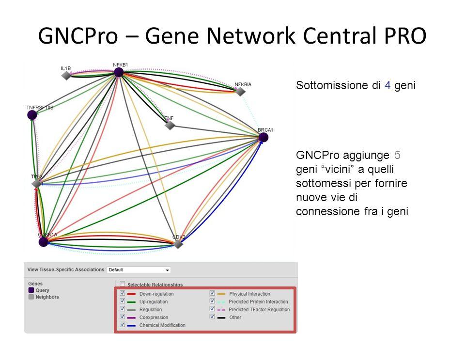 """Sottomissione di 4 geni GNCPro aggiunge 5 geni """"vicini"""" a quelli sottomessi per fornire nuove vie di connessione fra i geni"""