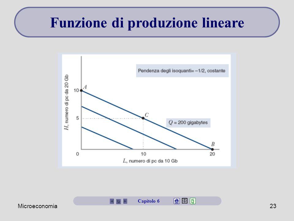 Microeconomia23 Capitolo 6 Funzione di produzione lineare