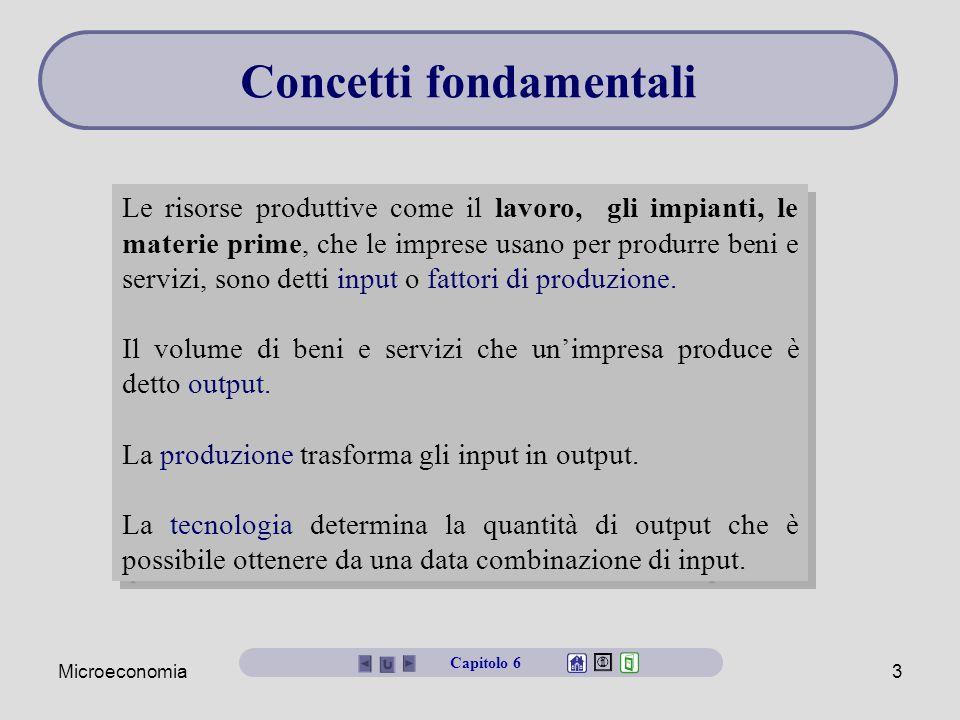 Microeconomia3 Le risorse produttive come il lavoro, gli impianti, le materie prime, che le imprese usano per produrre beni e servizi, sono detti inpu