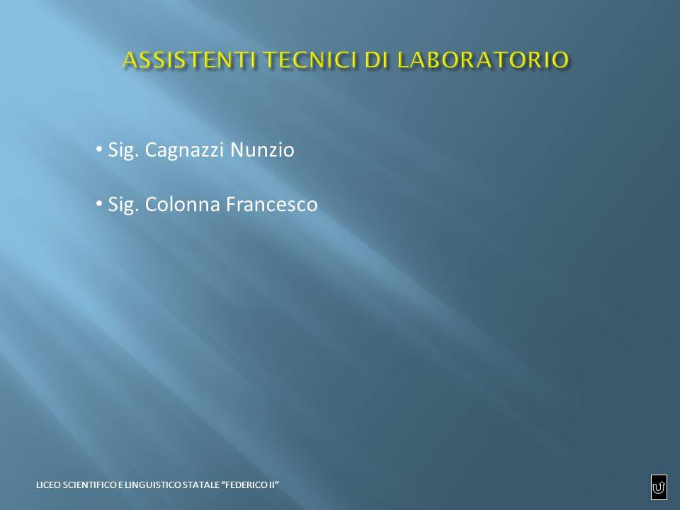 Sig. Cagnazzi Nunzio Sig. Colonna Francesco LICEO SCIENTIFICO E LINGUISTICO STATALE FEDERICO II