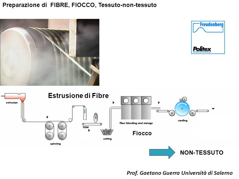 Preparazione di FIBRE, FIOCCO, Tessuto-non-tessuto Estrusione di Fibre NON-TESSUTO Fiocco Prof. Gaetano Guerra Università di Salerno