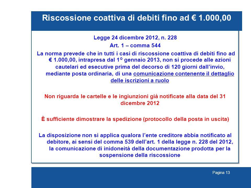 Pagina 13 Riscossione coattiva di debiti fino ad € 1.000,00 Legge 24 dicembre 2012, n.