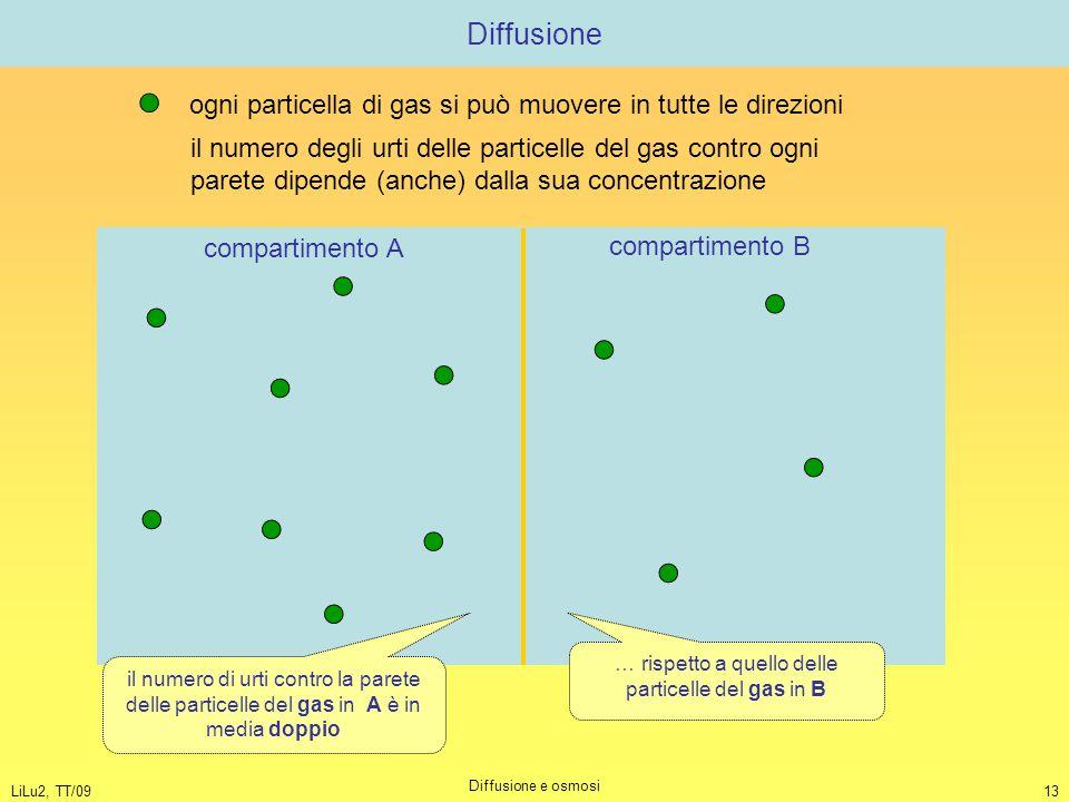 LiLu2, TT/09 Diffusione e osmosi 13 Diffusione ogni particella di gas si può muovere in tutte le direzioni il numero degli urti delle particelle del g