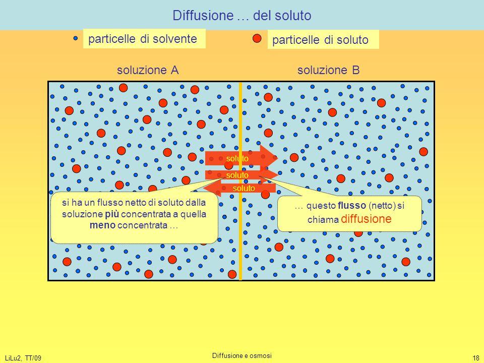 LiLu2, TT/09 Diffusione e osmosi 18 Diffusione … del soluto soluto soluzione A soluzione B particelle di solvente particelle di soluto soluto si ha un