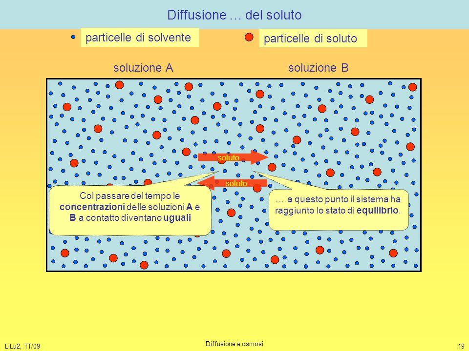 LiLu2, TT/09 Diffusione e osmosi 19 Diffusione … del soluto soluzione A soluzione B particelle di solvente particelle di soluto soluto Col passare del