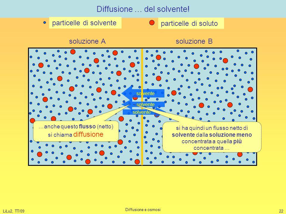 LiLu2, TT/09 Diffusione e osmosi 22 Diffusione … del solvente! solvente soluzione A soluzione B particelle di solvente particelle di soluto solvente s