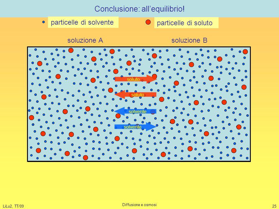 LiLu2, TT/09 Diffusione e osmosi 25 Conclusione: all'equilibrio! soluzione A soluzione B particelle di solvente particelle di soluto soluto solvente
