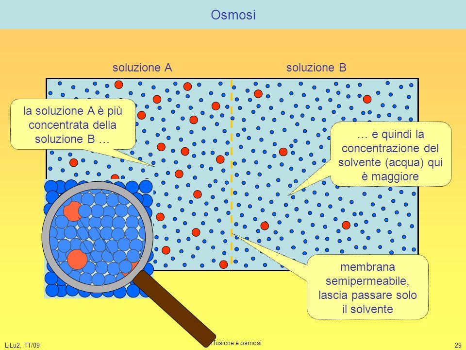 LiLu2, TT/09 Diffusione e osmosi 29 Osmosi soluzione A soluzione B la soluzione A è più concentrata della soluzione B … … e quindi la concentrazione d