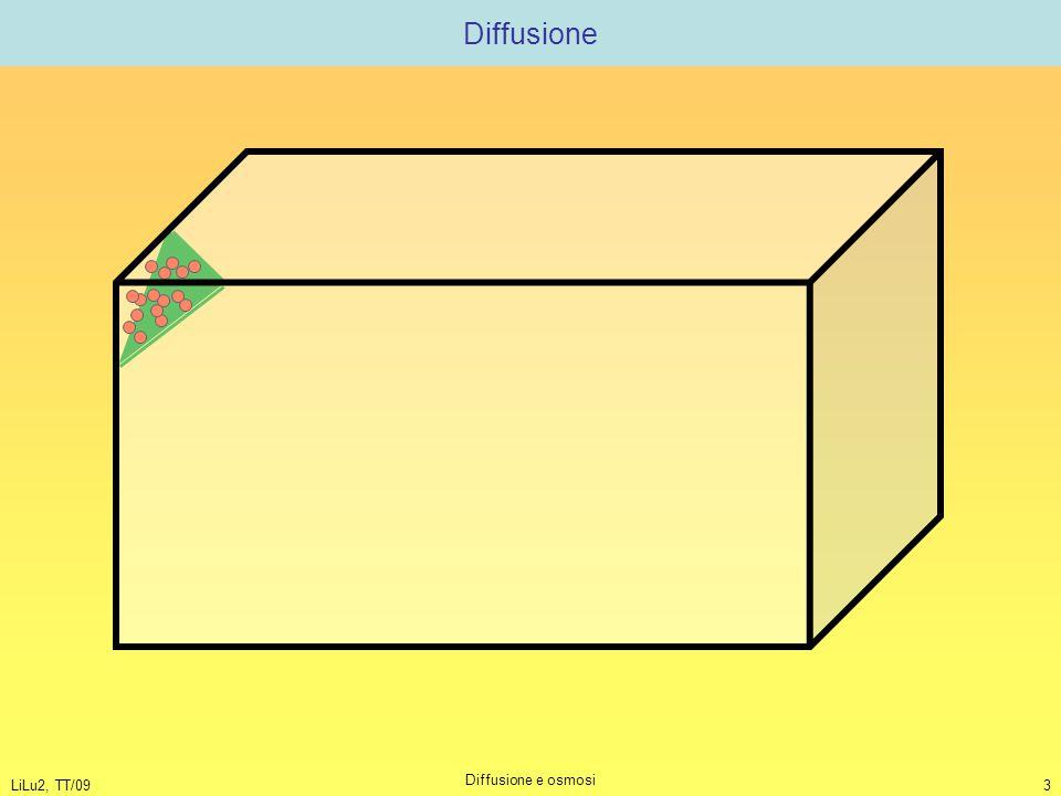 LiLu2, TT/09 Diffusione e osmosi 3 Diffusione