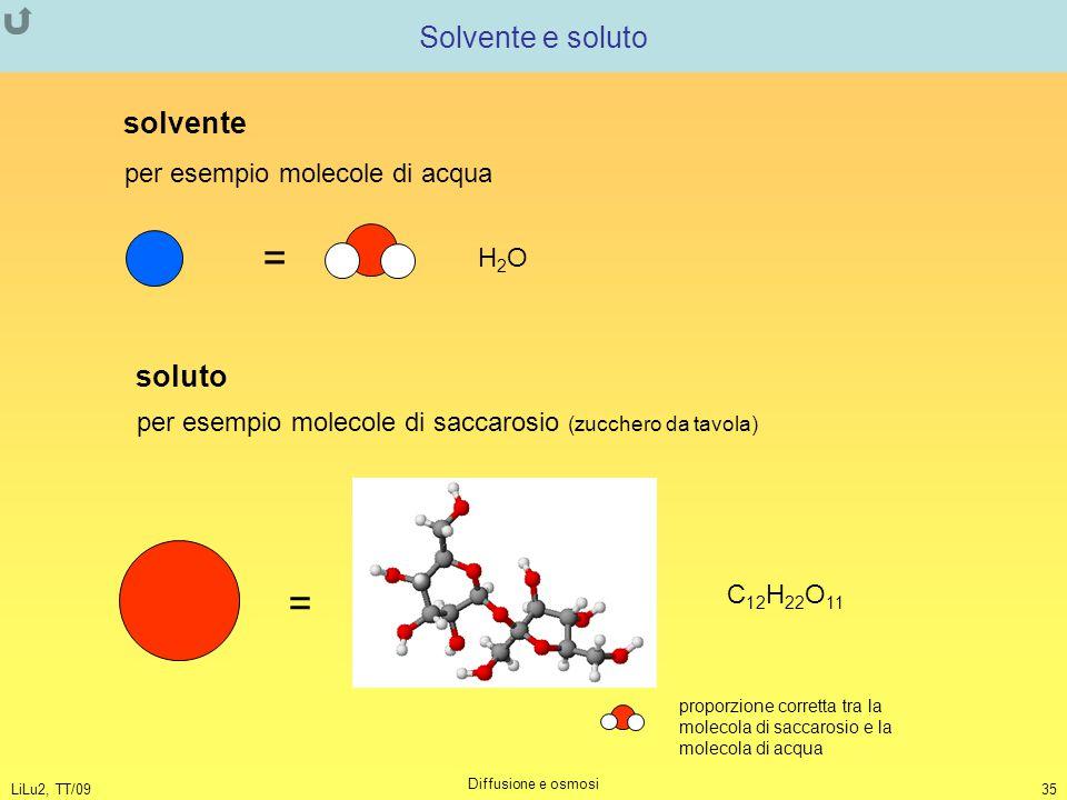 LiLu2, TT/09 Diffusione e osmosi 35 Solvente e soluto per esempio molecole di acqua = H2OH2O solvente soluto per esempio molecole di saccarosio (zucch