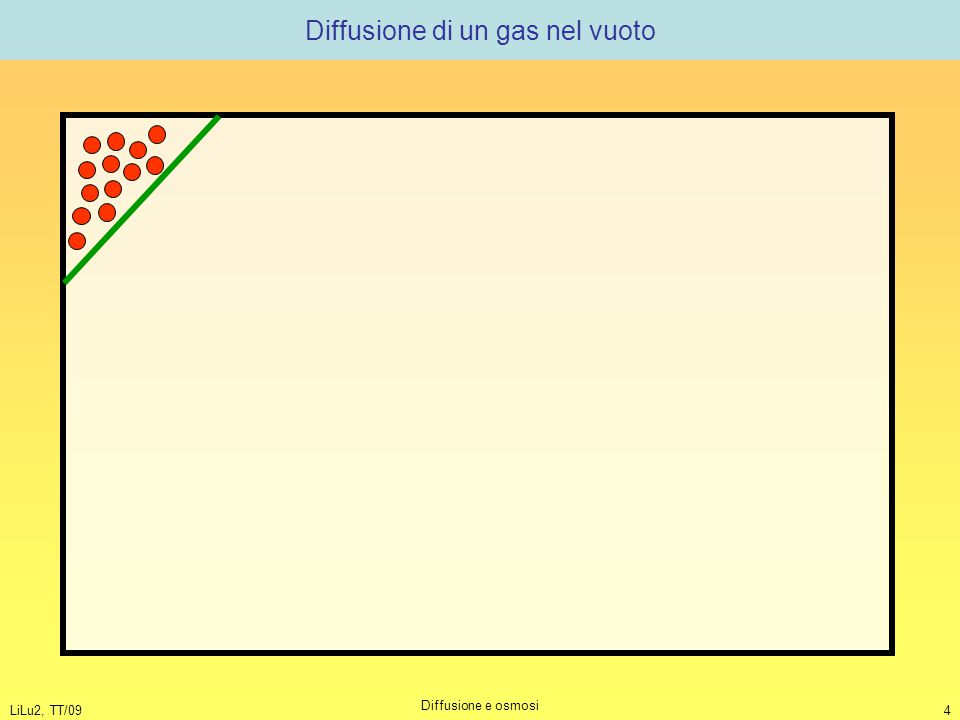 LiLu2, TT/09 Diffusione e osmosi 4 Diffusione di un gas nel vuoto