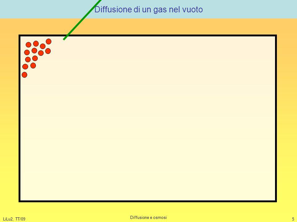 LiLu2, TT/09 Diffusione e osmosi 5 Diffusione di un gas nel vuoto