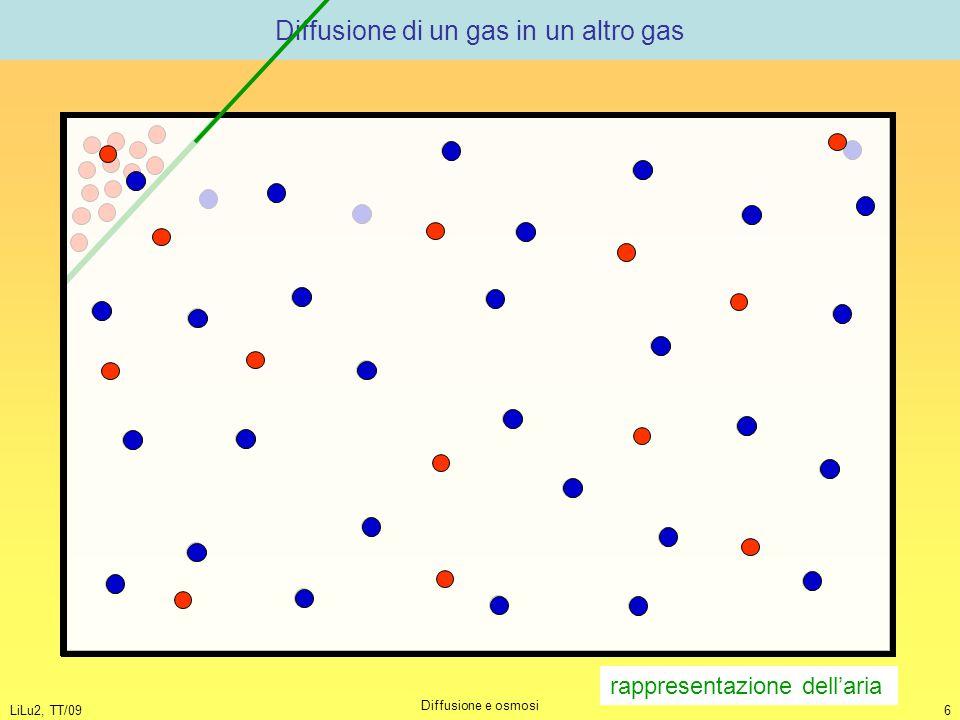 LiLu2, TT/09 Diffusione e osmosi 6 Diffusione di un gas in un altro gas rappresentazione dell'aria