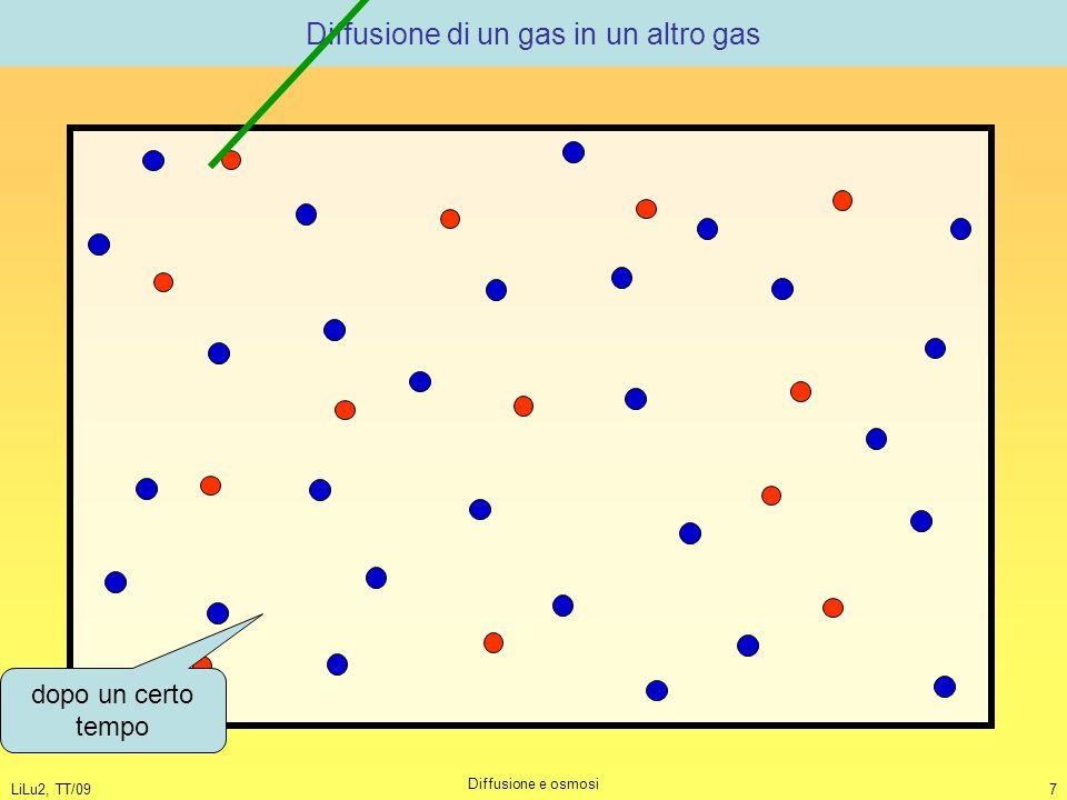 LiLu2, TT/09 Diffusione e osmosi 7 Diffusione di un gas in un altro gas dopo un certo tempo