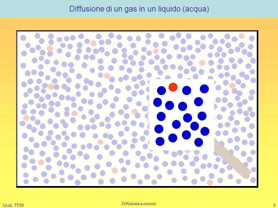 LiLu2, TT/09 Diffusione e osmosi 9 Diffusione di un gas in un liquido (acqua)