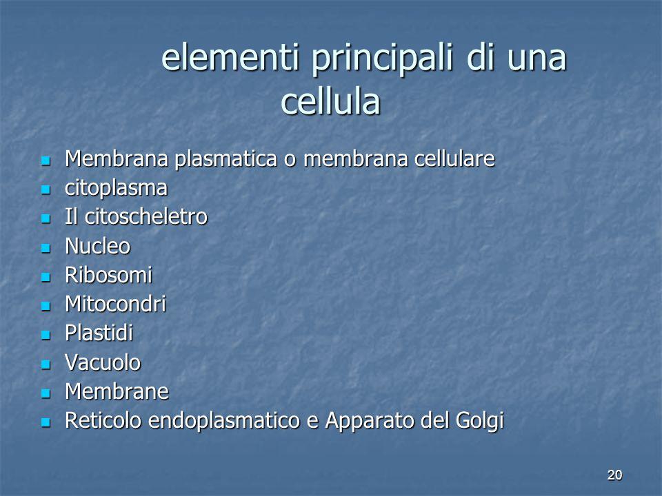 20 elementi principali di una cellula Membrana plasmatica o membrana cellulare Membrana plasmatica o membrana cellulare citoplasma citoplasma Il citos