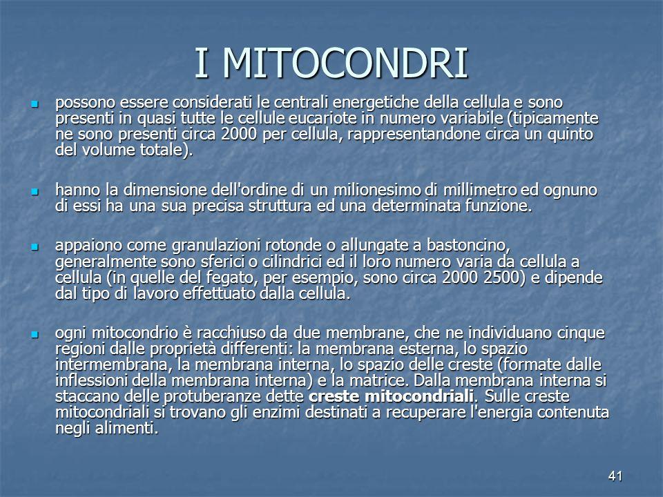 41 I MITOCONDRI possono essere considerati le centrali energetiche della cellula e sono presenti in quasi tutte le cellule eucariote in numero variabile (tipicamente ne sono presenti circa 2000 per cellula, rappresentandone circa un quinto del volume totale).