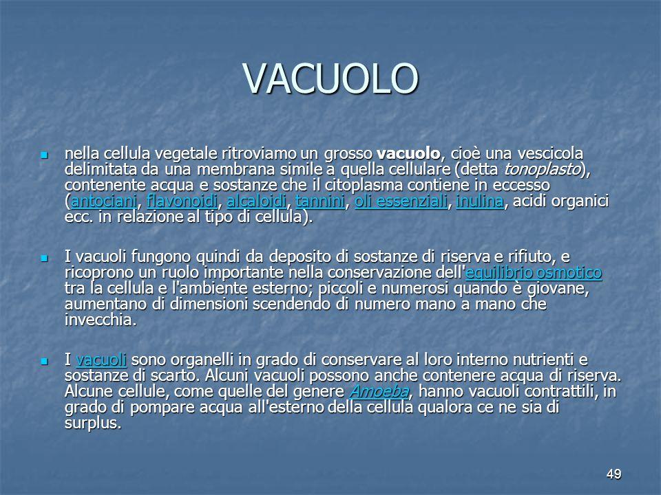 49 VACUOLO nella cellula vegetale ritroviamo un grosso vacuolo, cioè una vescicola delimitata da una membrana simile a quella cellulare (detta tonopla