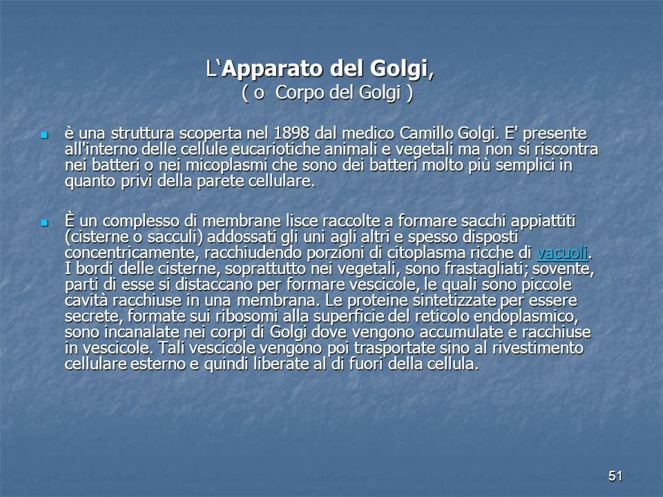 51 L'Apparato del Golgi, L'Apparato del Golgi, ( o Corpo del Golgi ) ( o Corpo del Golgi ) è una struttura scoperta nel 1898 dal medico Camillo Golgi.