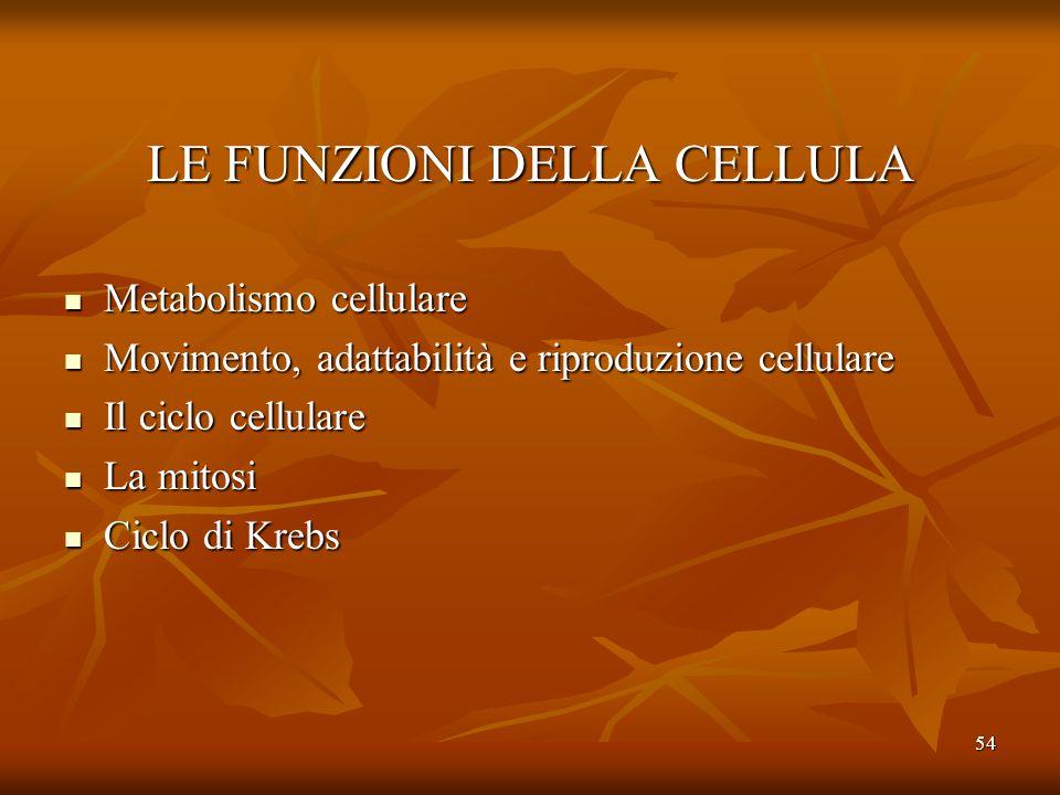 54 LE FUNZIONI DELLA CELLULA LE FUNZIONI DELLA CELLULA Metabolismo cellulare Metabolismo cellulare Movimento, adattabilità e riproduzione cellulare Movimento, adattabilità e riproduzione cellulare Il ciclo cellulare Il ciclo cellulare La mitosi La mitosi Ciclo di Krebs Ciclo di Krebs