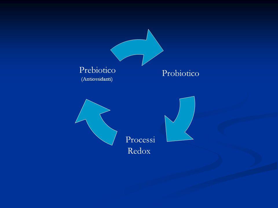 Probiotico Processi Redox Prebiotico (Antiossidanti)