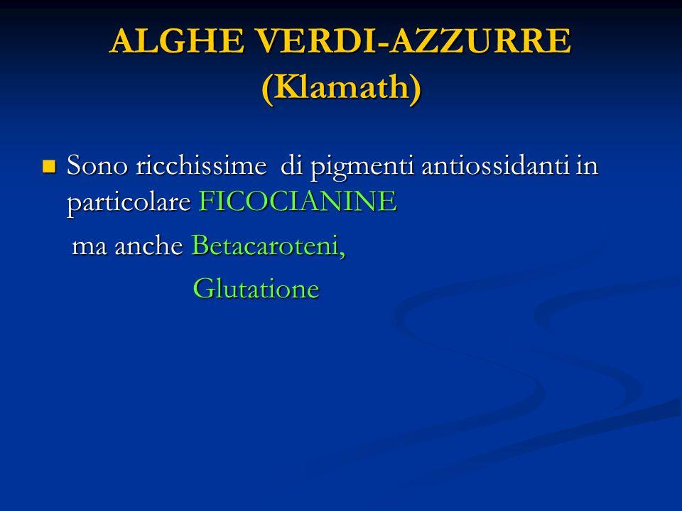 ALGHE VERDI-AZZURRE (Klamath) Sono ricchissime di pigmenti antiossidanti in particolare FICOCIANINE Sono ricchissime di pigmenti antiossidanti in particolare FICOCIANINE ma anche Betacaroteni, ma anche Betacaroteni, Glutatione Glutatione
