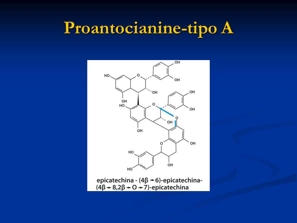 Proantocianine-tipo A
