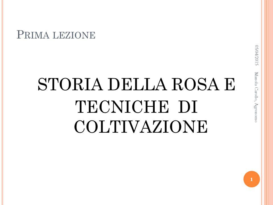 05/04/2015Manola Carollo, Agronomo 12 Crepuscule Allister Stella Gray