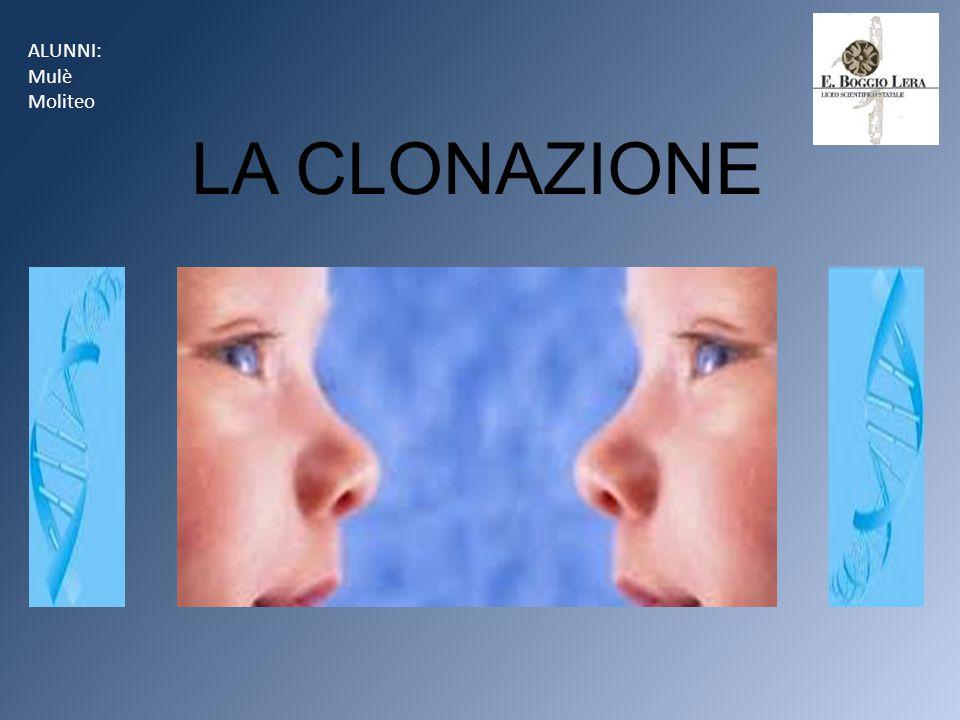 Cos'è la clonazione.