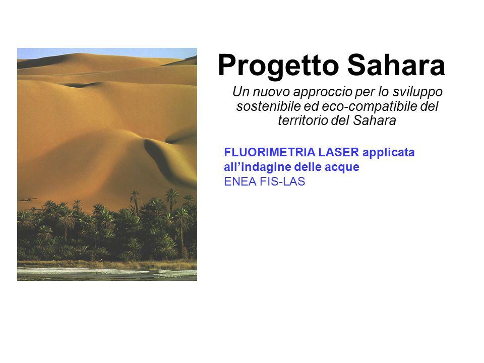 Progetto Sahara Un nuovo approccio per lo sviluppo sostenibile ed eco-compatibile del territorio del Sahara FLUORIMETRIA LASER applicata all'indagine delle acque ENEA FIS-LAS