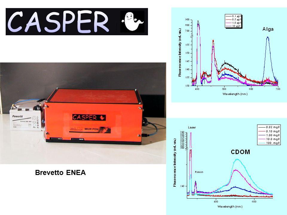 Citometria del plancton Citometro in flusso miniaturizzato –In realizzazione all'ENEA nell'ambito del progetto MIAO –Citometria in flusso del plancton basata sulla diffusione e la fluorescenza laser