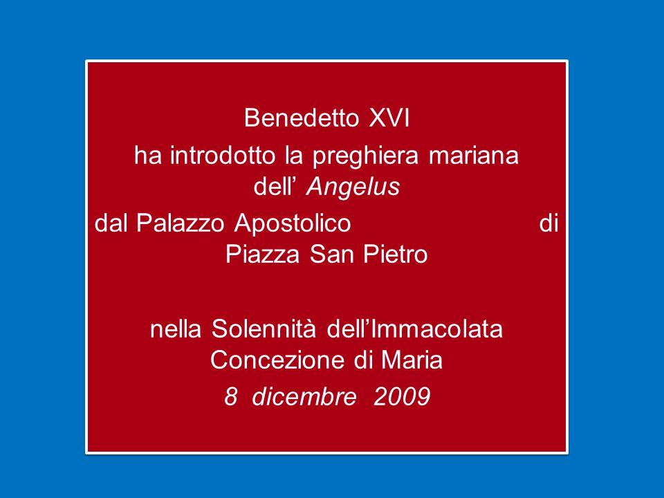 Benedetto XVI ha introdotto la preghiera mariana dell' Angelus dal Palazzo Apostolico di Piazza San Pietro nella Solennità dell'Immacolata Concezione di Maria 8 dicembre 2009 Benedetto XVI ha introdotto la preghiera mariana dell' Angelus dal Palazzo Apostolico di Piazza San Pietro nella Solennità dell'Immacolata Concezione di Maria 8 dicembre 2009