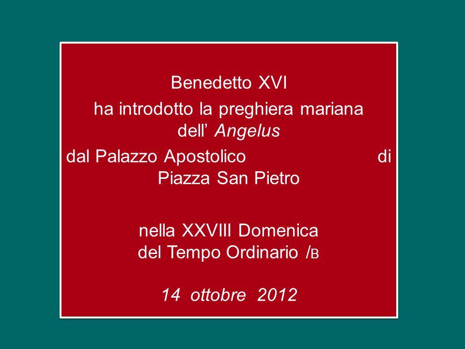 Benedetto XVI ha introdotto la preghiera mariana dell' Angelus dal Palazzo Apostolico di Piazza San Pietro nella XXVIII Domenica del Tempo Ordinario / B 14 ottobre 2012 Benedetto XVI ha introdotto la preghiera mariana dell' Angelus dal Palazzo Apostolico di Piazza San Pietro nella XXVIII Domenica del Tempo Ordinario / B 14 ottobre 2012