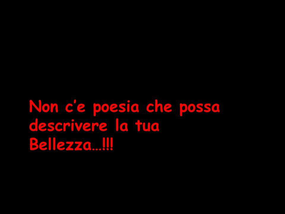 Non c'e poesia che possa descrivere la tua Bellezza…!!!