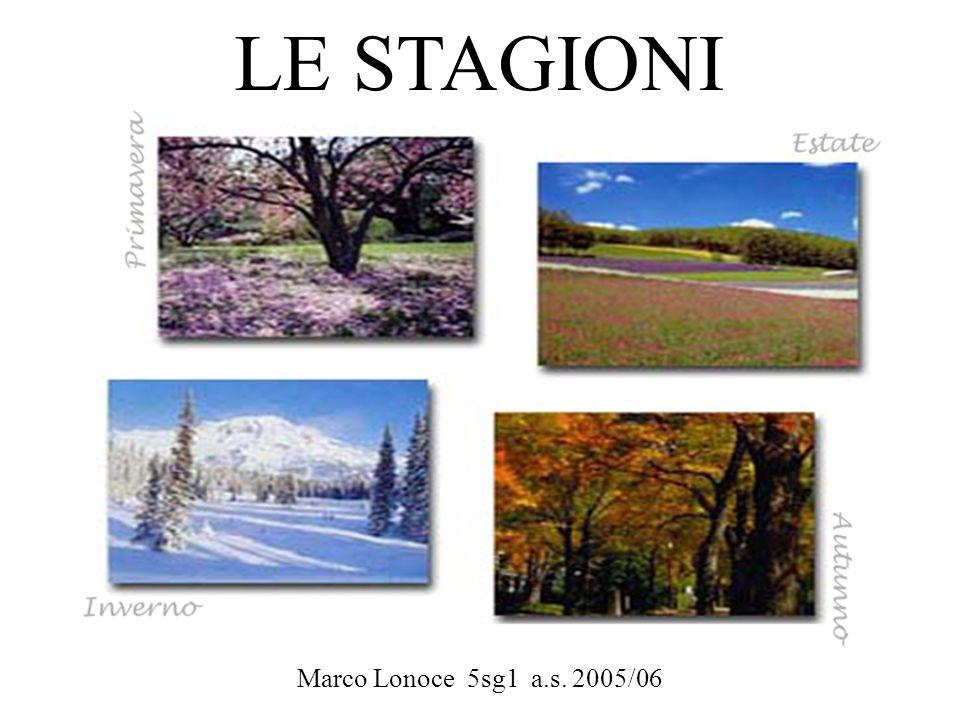 LE STAGIONI Marco Lonoce 5sg1 a.s. 2005/06