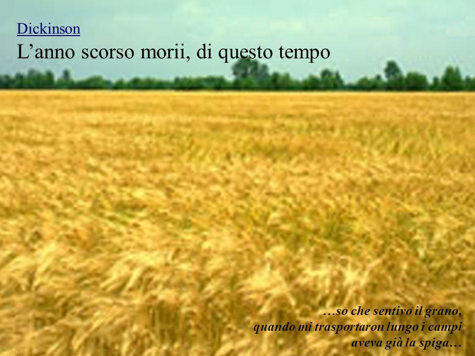 L'anno scorso morii, di questo tempo Dickinson …so che sentivo il grano, quando mi trasportaron lungo i campi aveva già la spiga…