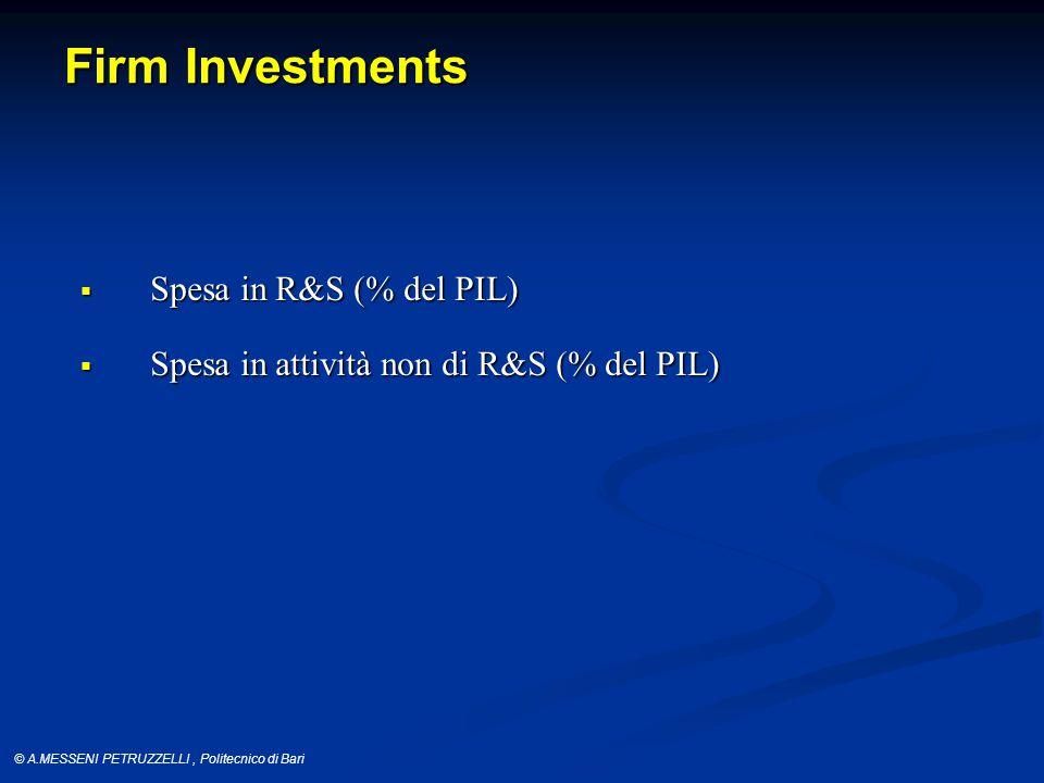 © A.MESSENI PETRUZZELLI, Politecnico di Bari Firm Investments  Spesa in R&S (% del PIL)  Spesa in attività non di R&S (% del PIL)