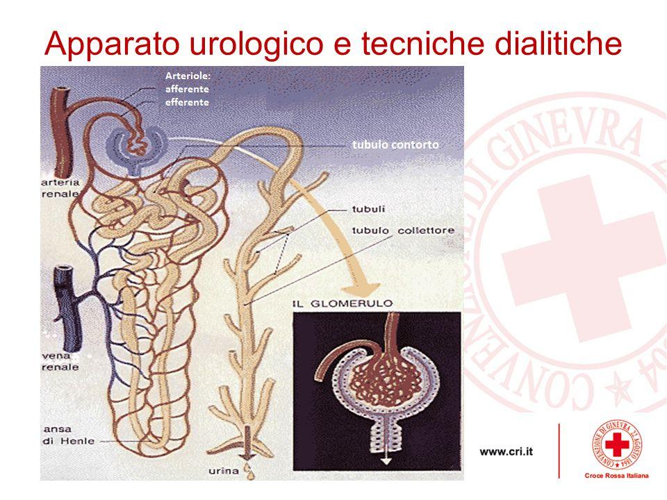 Catetere Vescicale Apparato urologico e tecniche dialitiche Il cateterismo vescicale è una metodica di drenaggio, atta all evacuazione dell'urina in tutte quelle situazioni in cui non sia possibile farlo fisiologicamente.