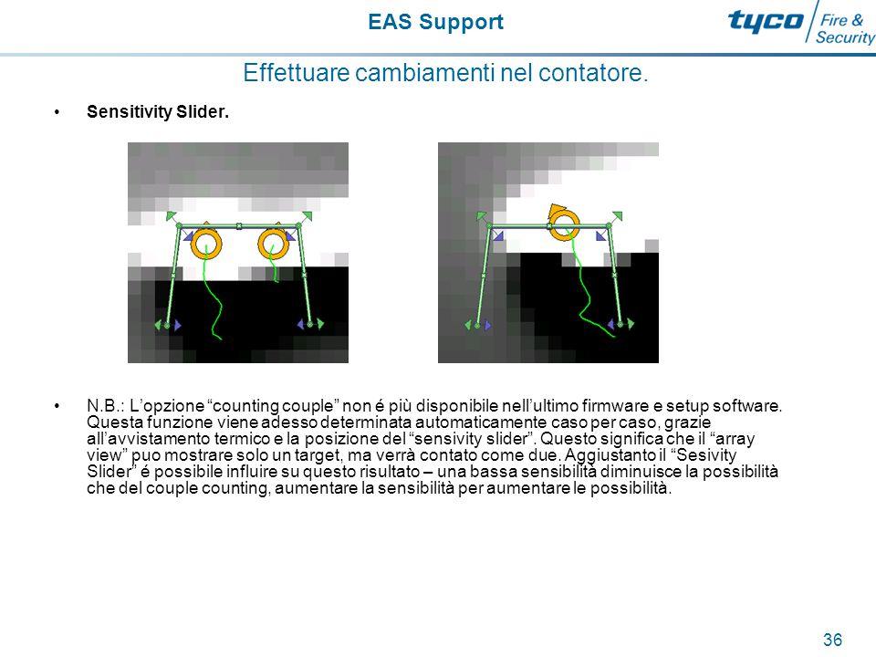 EAS Support 37 Effettuare cambiamenti nel contatore.