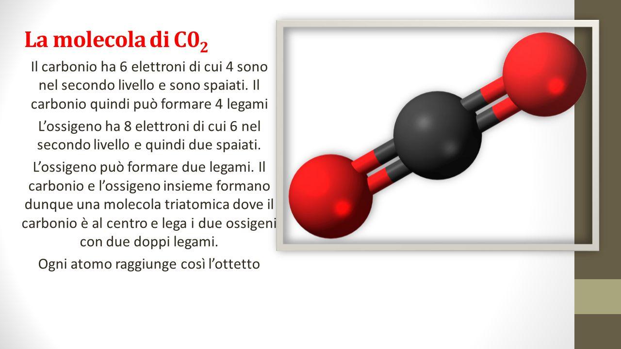 La molecola di C0 2 Il carbonio ha 6 elettroni di cui 4 sono nel secondo livello e sono spaiati. Il carbonio quindi può formare 4 legami L'ossigeno ha