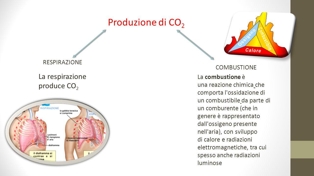 Produzione di CO 2 RESPIRAZIONE COMBUSTIONE La combustione è una reazione chimica che comporta l'ossidazione di un combustibile da parte di un combure