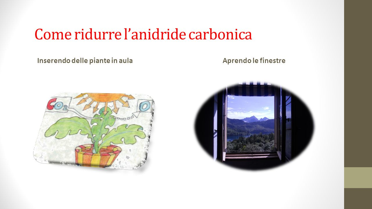 Come ridurre l'anidride carbonica Inserendo delle piante in aulaAprendo le finestre