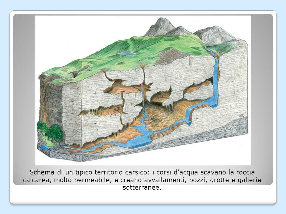Schema di un tipico territorio carsico: i corsi d'acqua scavano la roccia calcarea, molto permeabile, e creano avvallamenti, pozzi, grotte e gallerie sotterranee.