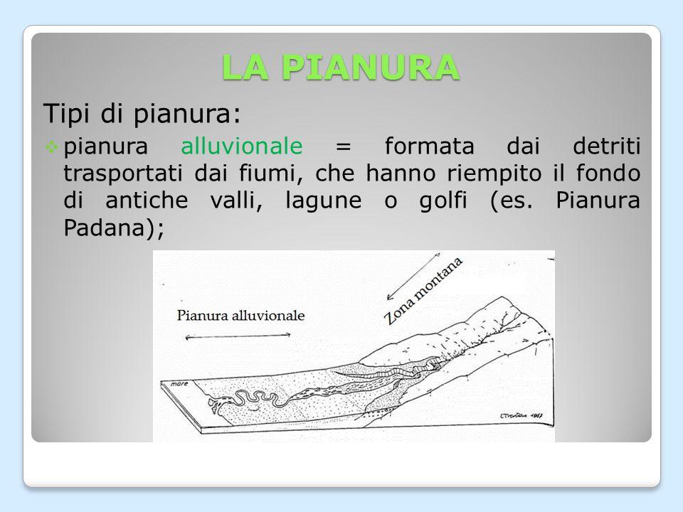 LA PIANURA Tipi di pianura:  pianura alluvionale = formata dai detriti trasportati dai fiumi, che hanno riempito il fondo di antiche valli, lagune o golfi (es.