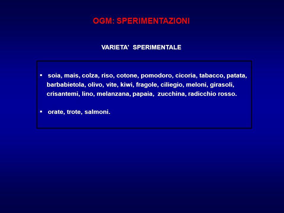 OGM: SPERIMENTAZIONI VARIETA' SPERIMENTALE  soia, mais, colza, riso, cotone, pomodoro, cicoria, tabacco, patata, barbabietola, olivo, vite, kiwi, fra